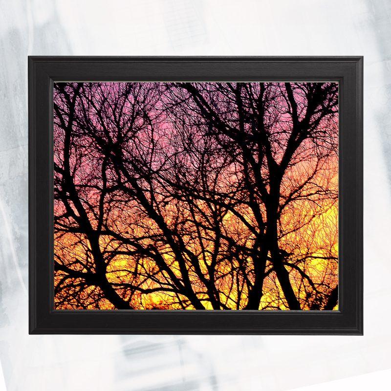 JA01-EX-BI Rainbow Trace_framed