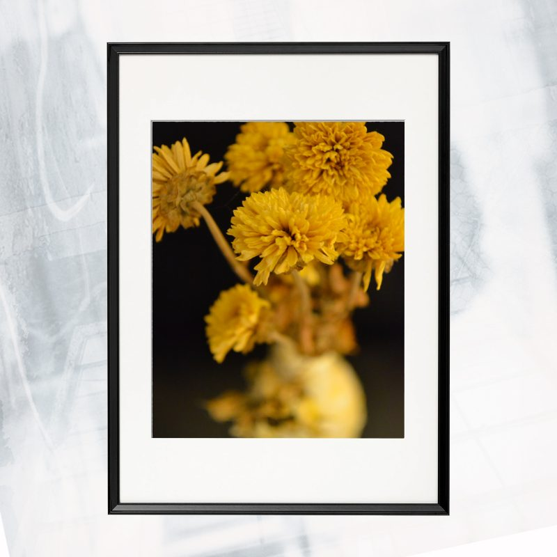 JA01-EX-CO Yellow II_framed