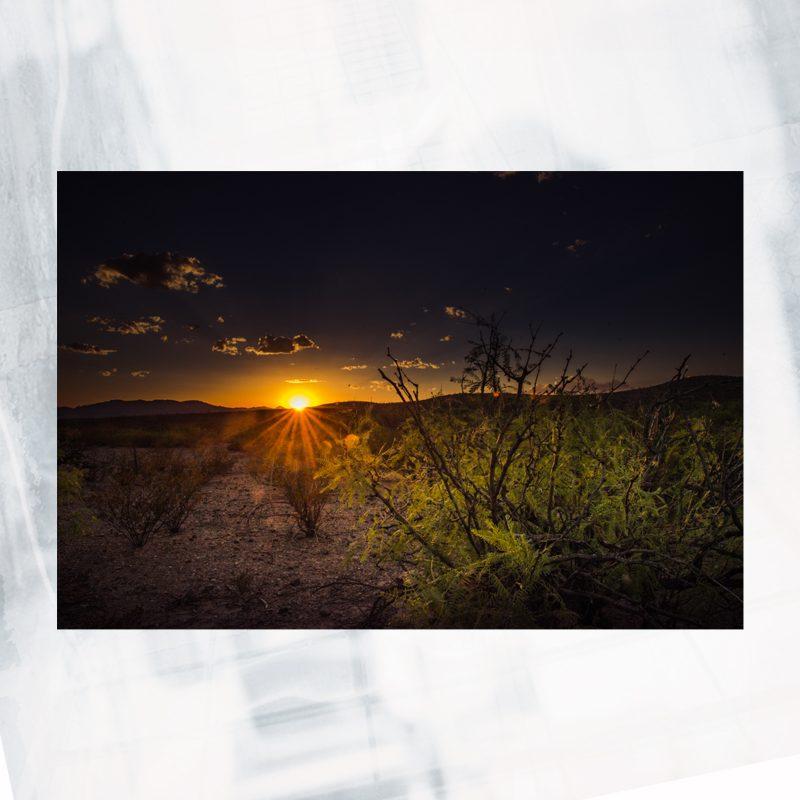 DJ01-EX-W-West texas light