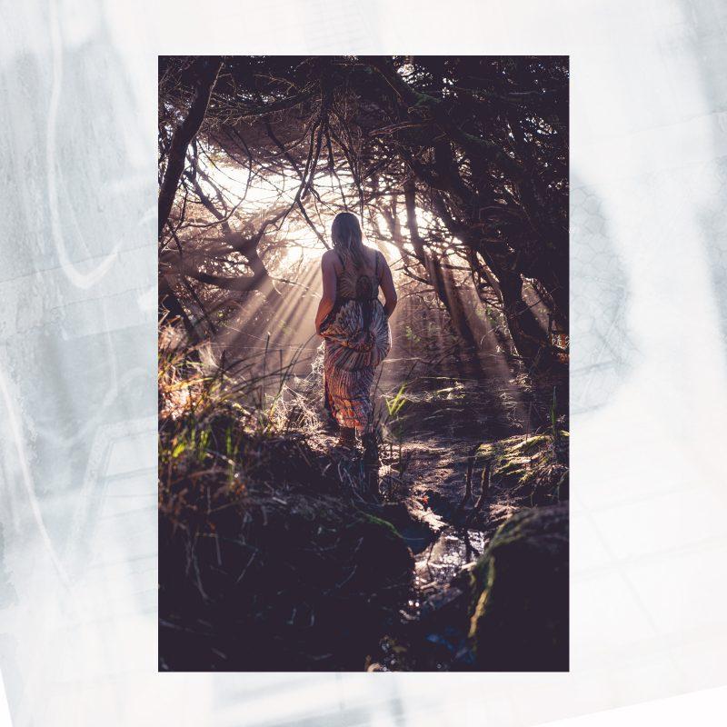 DJ01-EX-Y-Witch Forest