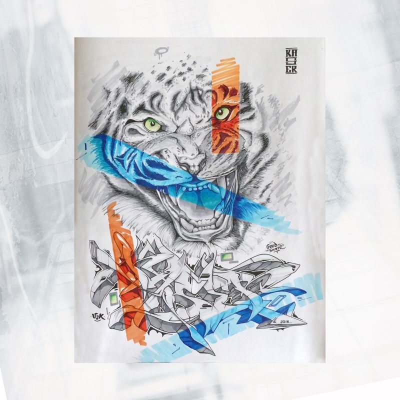 DS01-EX-L-Tiger style