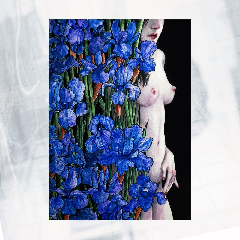 NP01-EX-B- Iris